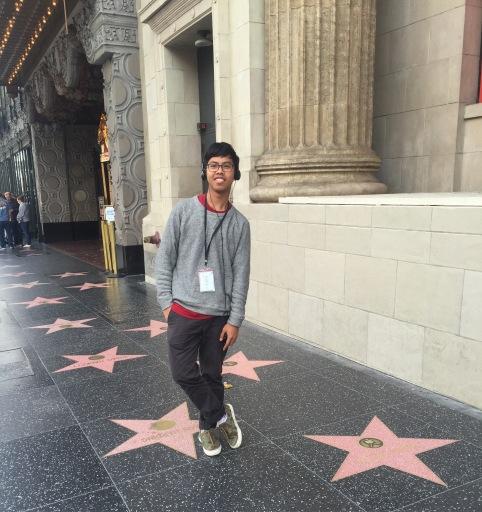 Hollywood Walking of Fame babee